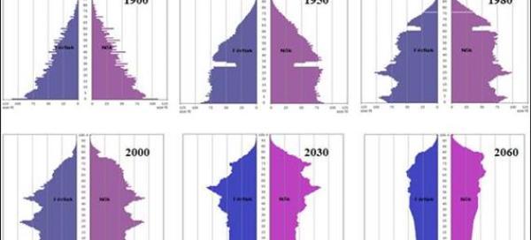 magyar korfa 1900-2060